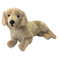 Bocchetta - Lucky Golden Retriever 51cm