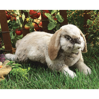 Folkmanis - Holland Lop Rabbit Puppet