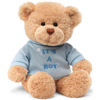 Gund - Message Bear It's a Boy Plush Toy 32cm