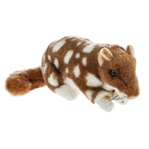 Bocchetta - Spotty Quoll Plush Toy 20cm