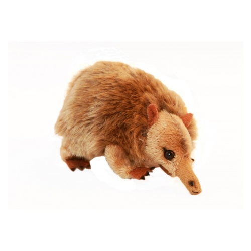 Bocchetta - Mini Echidna Plush Toy 11cm